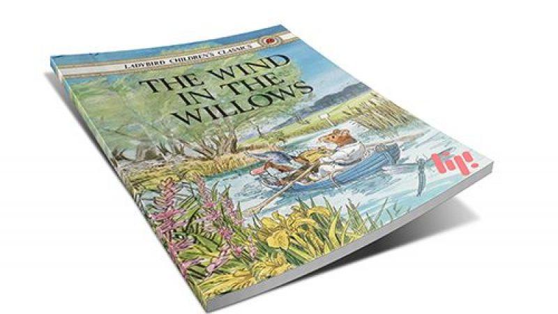 رمان انگلیسی The wind in the willows